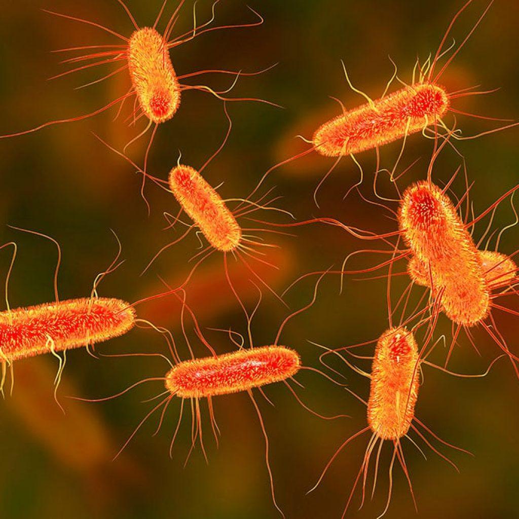 Asi-es-como-los-iones-de-plata-matan-las-bacterias
