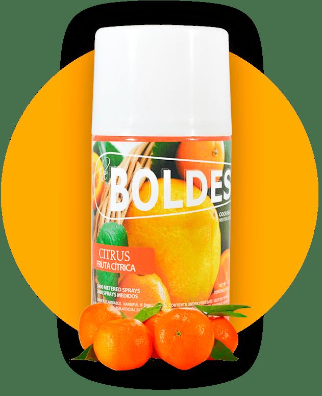 Boldest Citrus